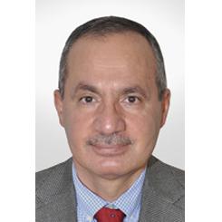 Emadeddin M.Said Raddaoui